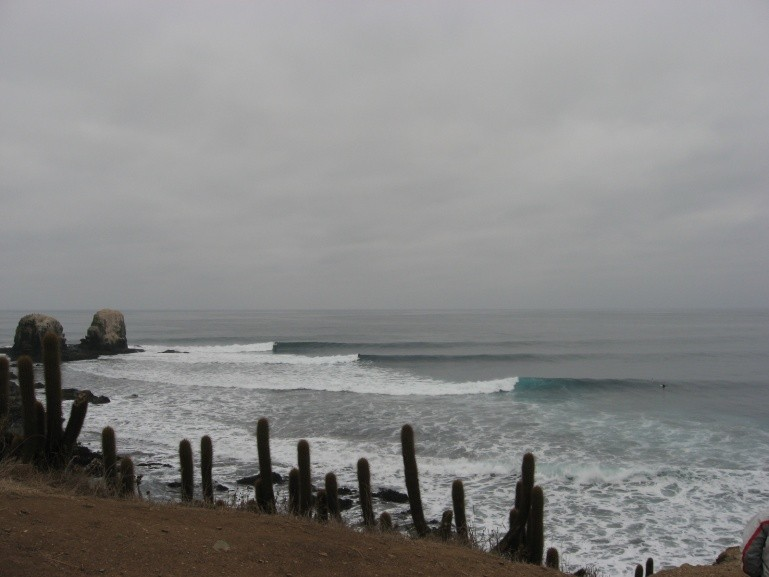 da wicht's photo of Punta de Lobos