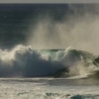 Video of Pipeline & Backdoor
