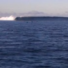 Video of Tavarua - Cloudbreak