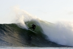 Photo of Irago