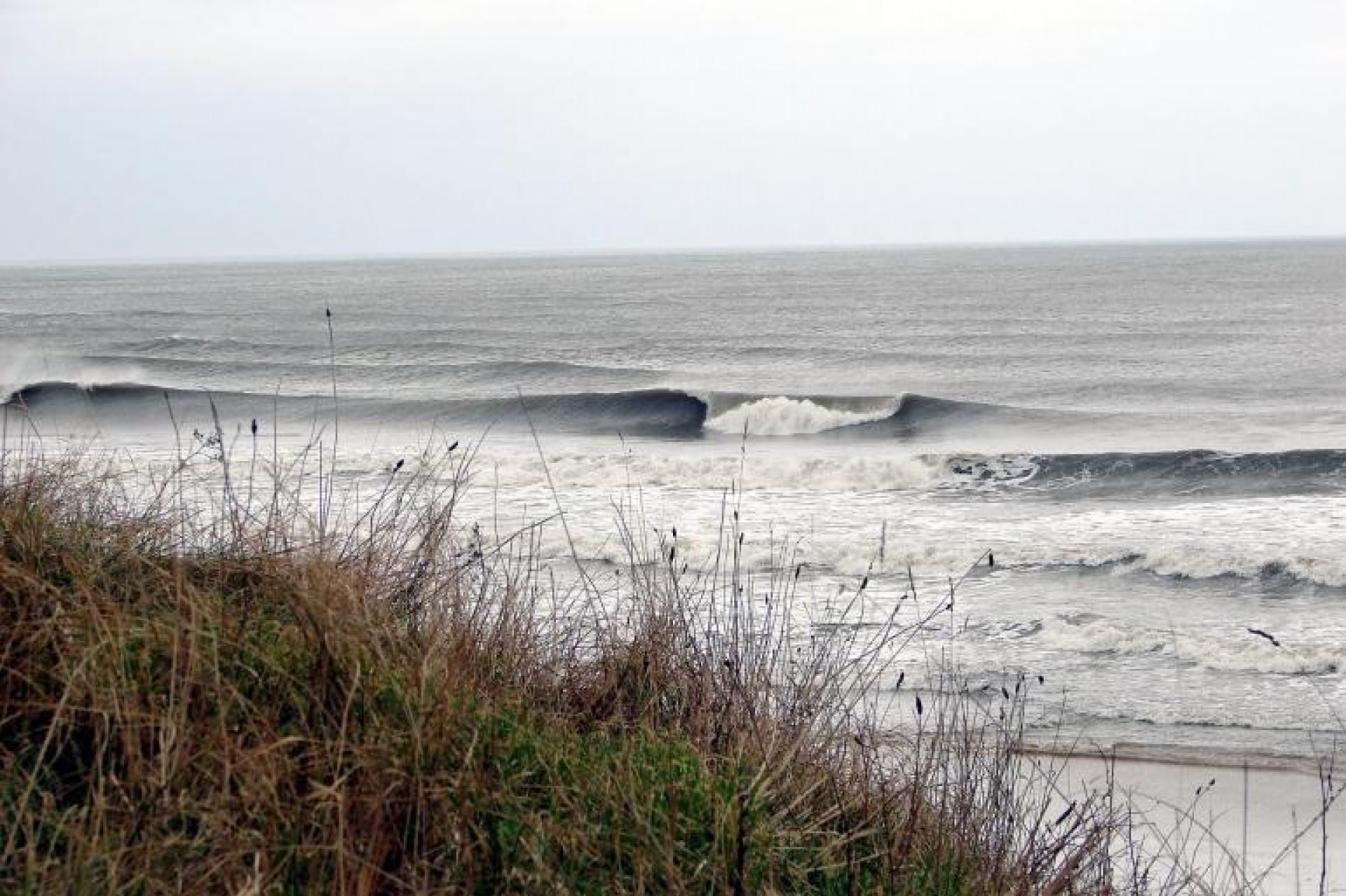 James C's photo of Tynemouth - Longsands