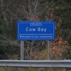 Video of Cow Bay