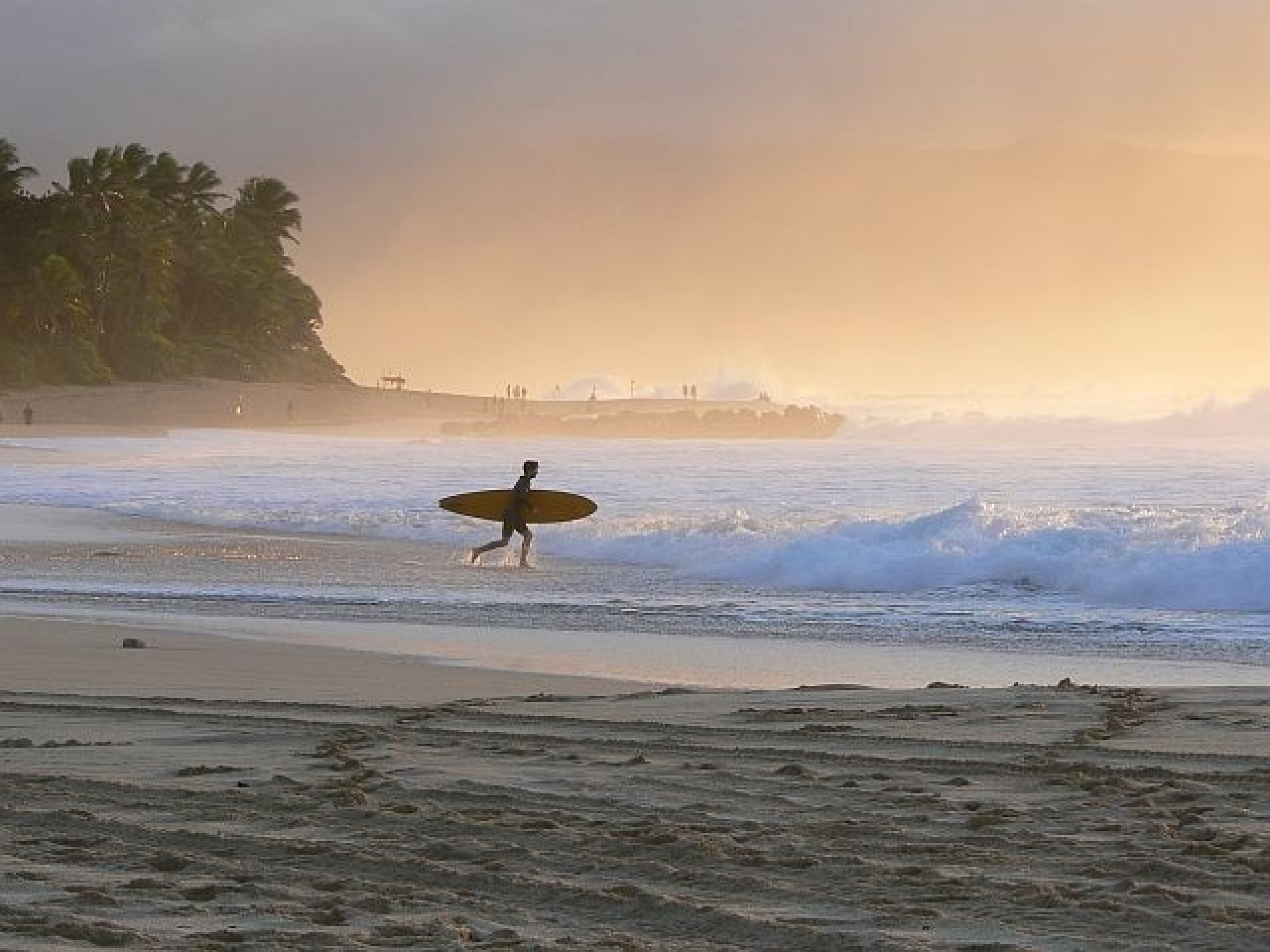 Emma Mac's photo of Pipeline & Backdoor