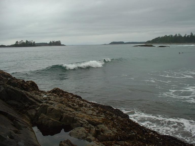 Matte's photo of Vancouver Island North (Long Beach)