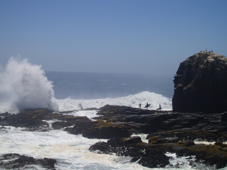 Panchito's photo of Punta de Lobos