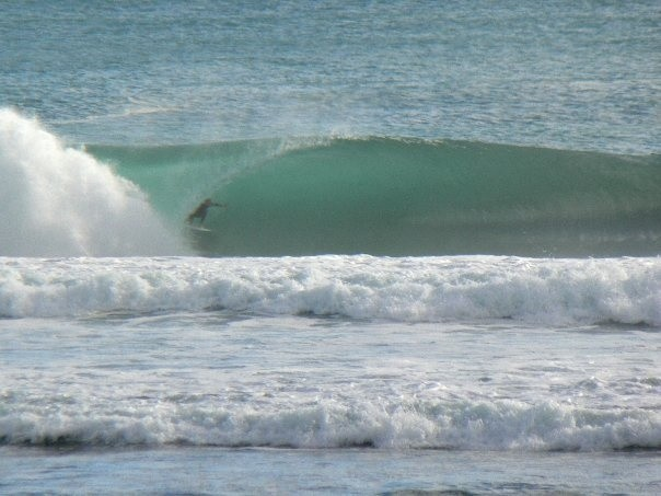 barron1's photo of Piha