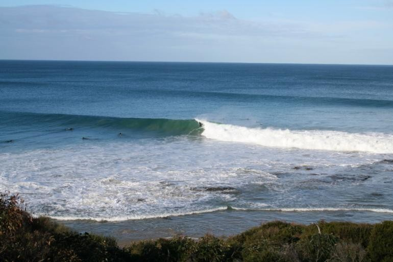 Andrew Weight's photo of Lorne