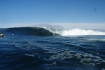 Photo of Shipstern Bluff