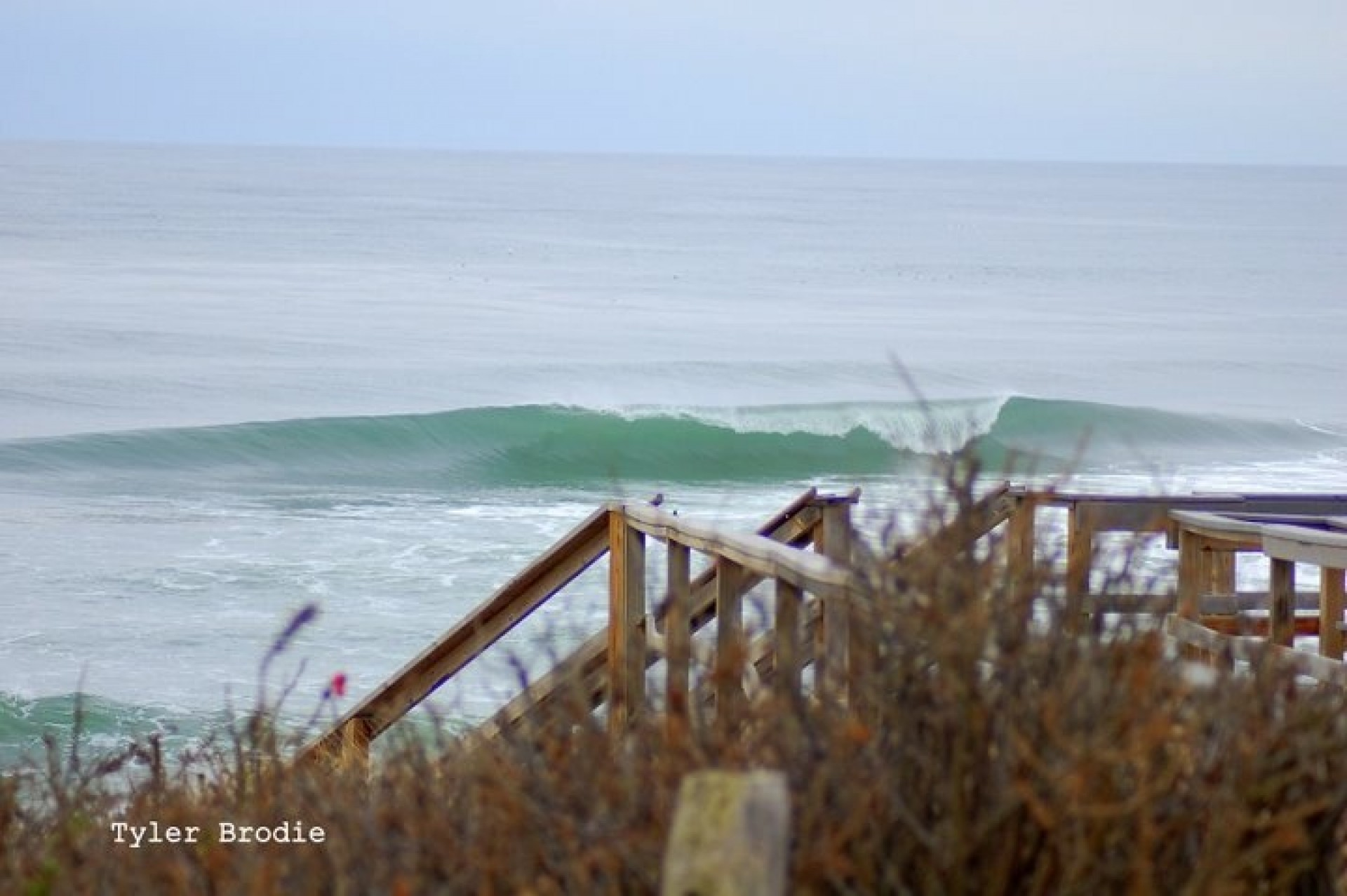 Tbrodes's photo of Cape Cod