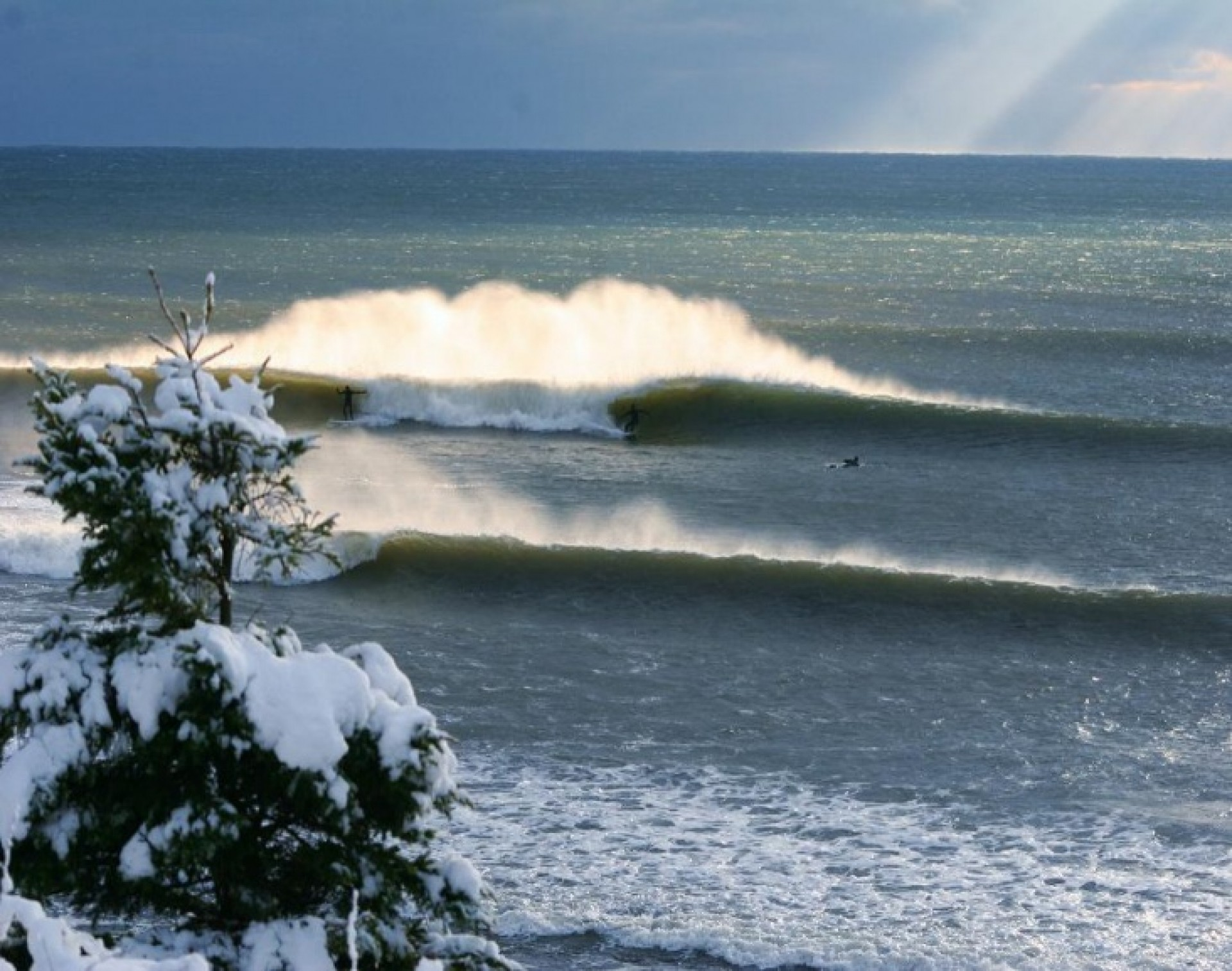 phil taylor's photo of Cow Bay