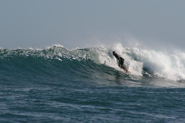Gavin Rother's photo of Jelly Babies (Anakao)
