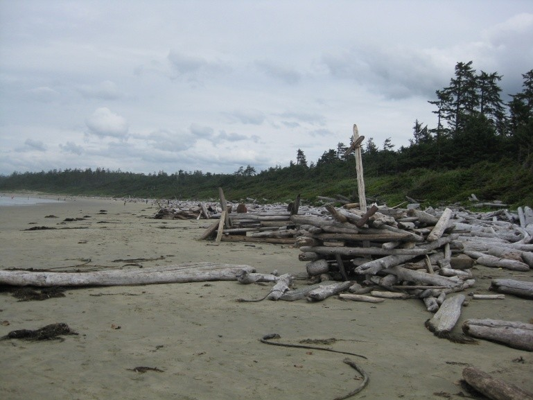 H-B's photo of Vancouver Island South (Jordan River)