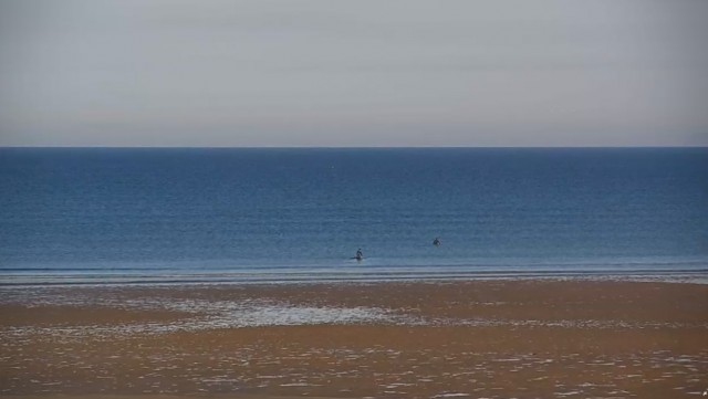 Saunton Sands Surf Report