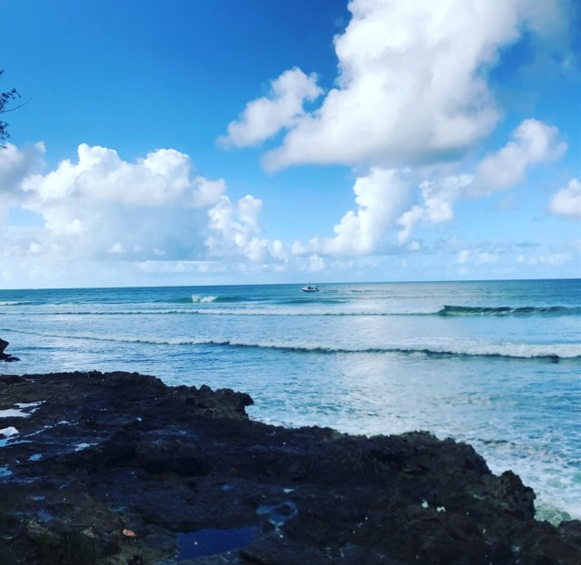 Barbados Surf Reports and Surfing