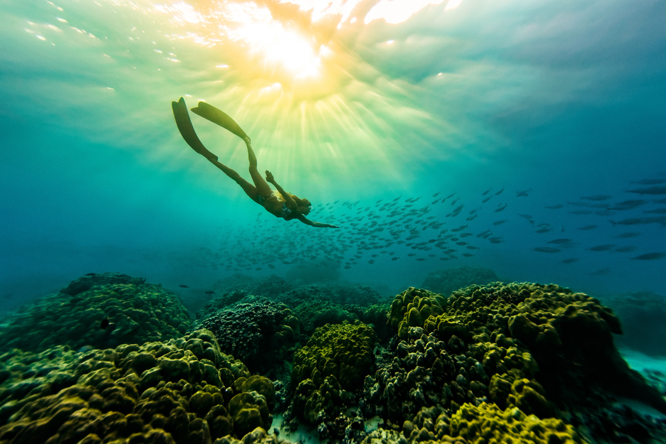Freediving, perfect training for getting rolled in the big stuff.