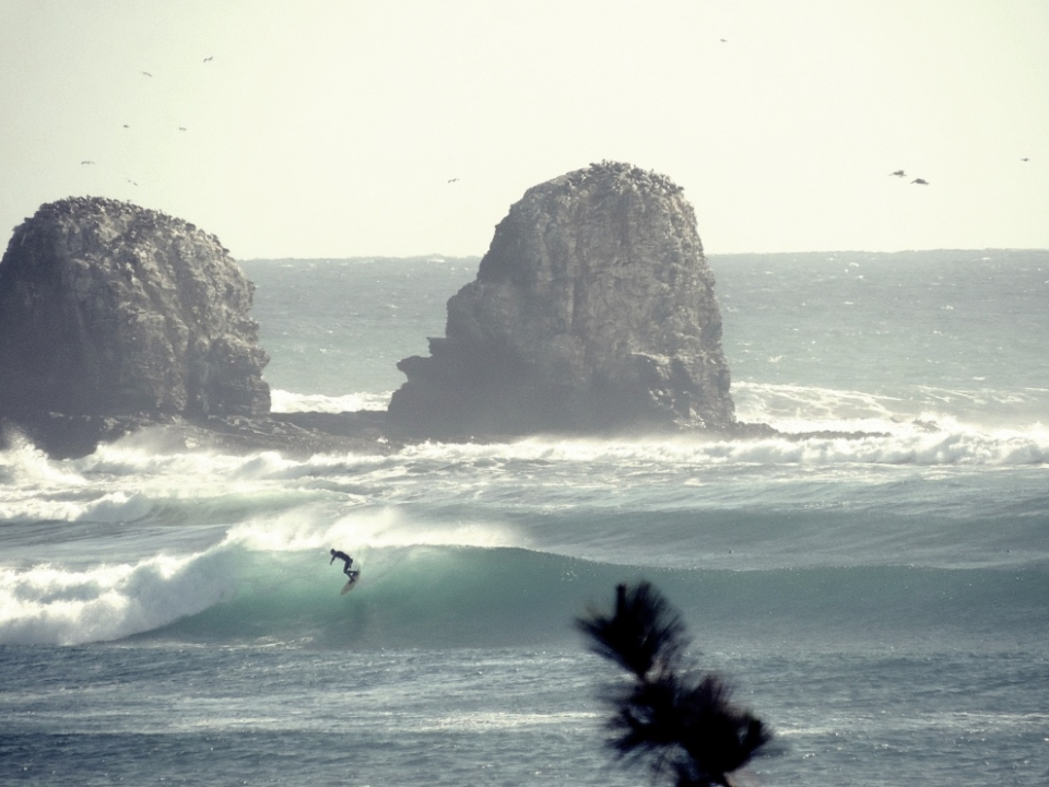 """""""With regards to Chile, we are currently planning on having Punta de Lobos as the next World Surfing Reserve,"""" says Nick Mucha, from Save the Waves. """"We are working with a local committee to identify the core threats to Punta de Lobos and will develop a stewardship plan with them to mitigate those threats. As we move further along with them we might certainly explore whether a similar law might be feasible in Chile."""""""