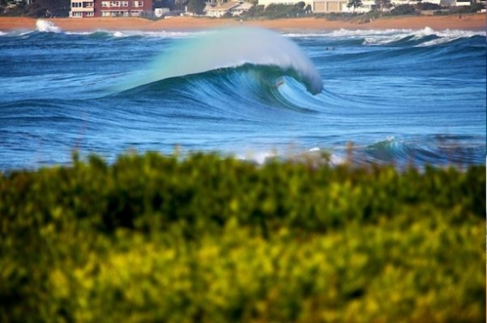 Long period empty perfection on a north-east swell ... Narrabeen