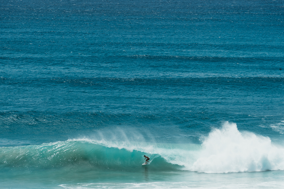 Kirra, Snapper, everywhere has been driven into frenzy mode.
