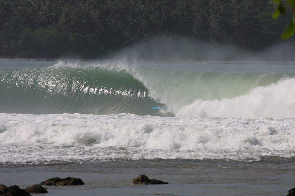 16 months in Indo means there's been many, many tubes like this.