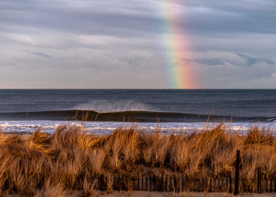 The rainbow swell, of course.