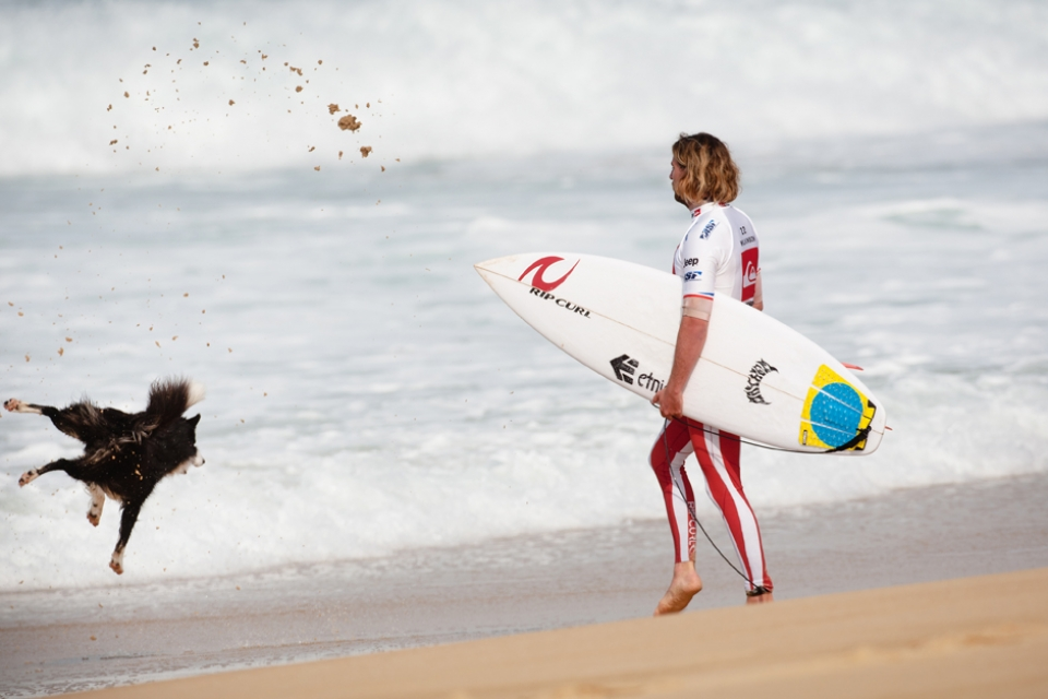 Matt Wilkinson grew frustrated with this energetic collie who wanted to play. It is just another fan of his wetsuit.