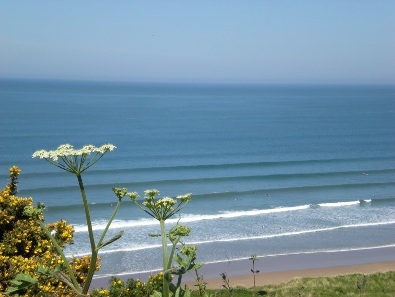 Shifta's photo of Croyde Beach