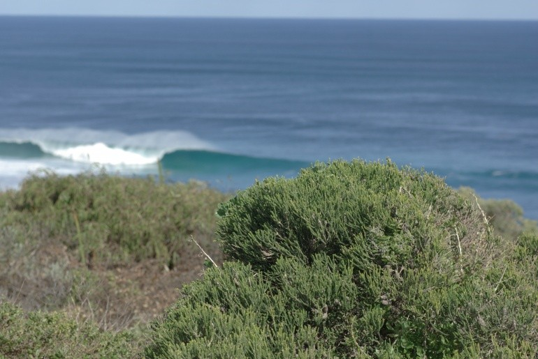 jackooo's photo of Margaret River