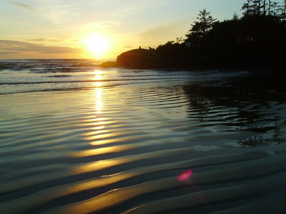 tofinoplease's photo of Tofino (Cox Bay)