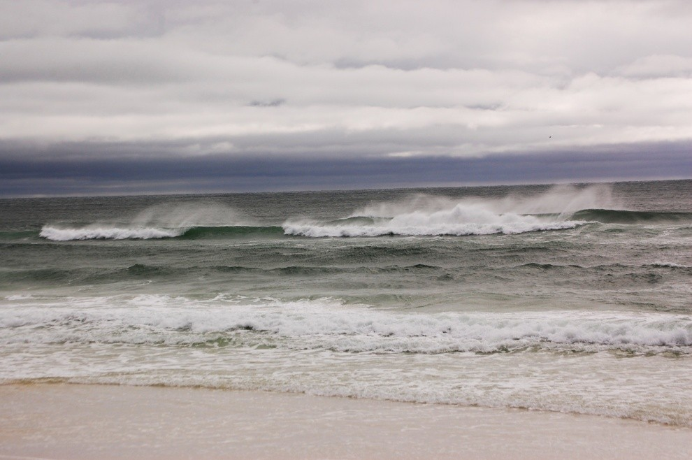 Amanda Leigh Photography's photo of Destin