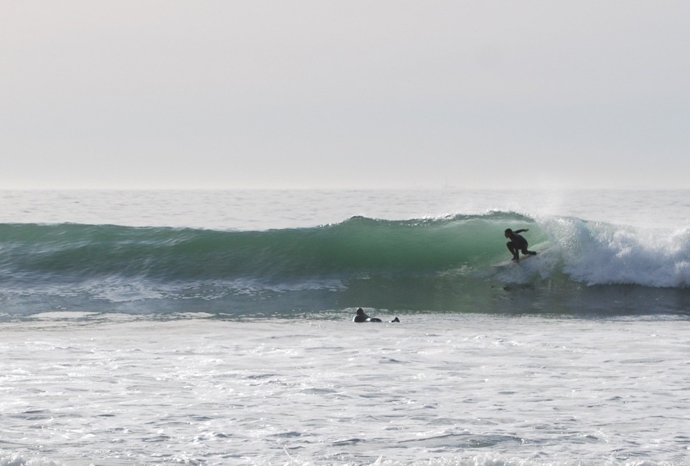 Surf Dawg's photo of Rincon Point