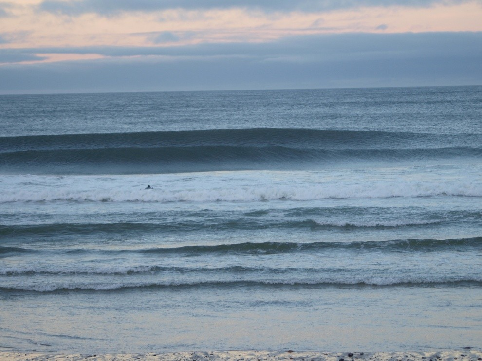 Willy D.'s photo of Cape Cod