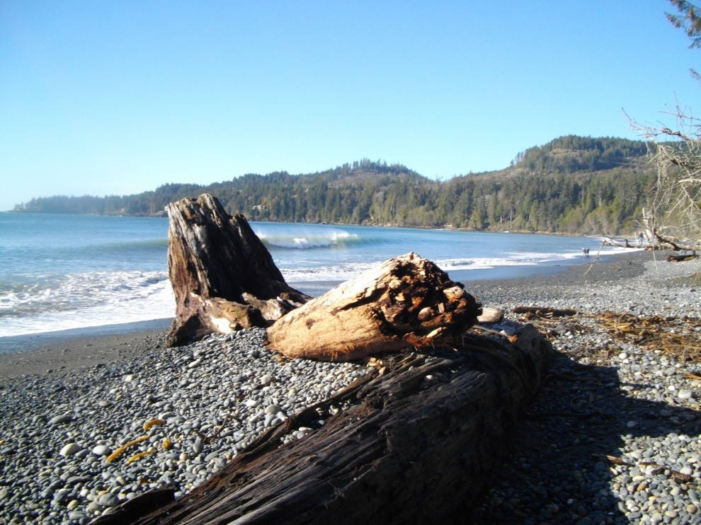 fr8lvr's photo of Vancouver Island South (Jordan River)