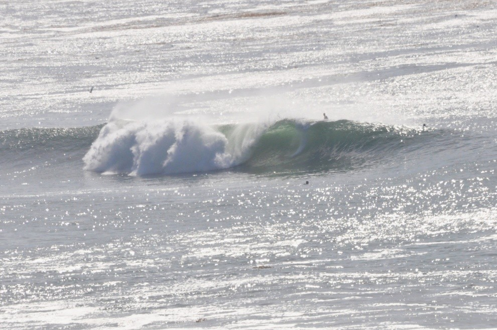 surf is swell's photo of Jalama Beach County Park