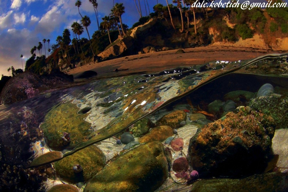 dale kobetich's photo of Laguna Beach (Brooks Street)
