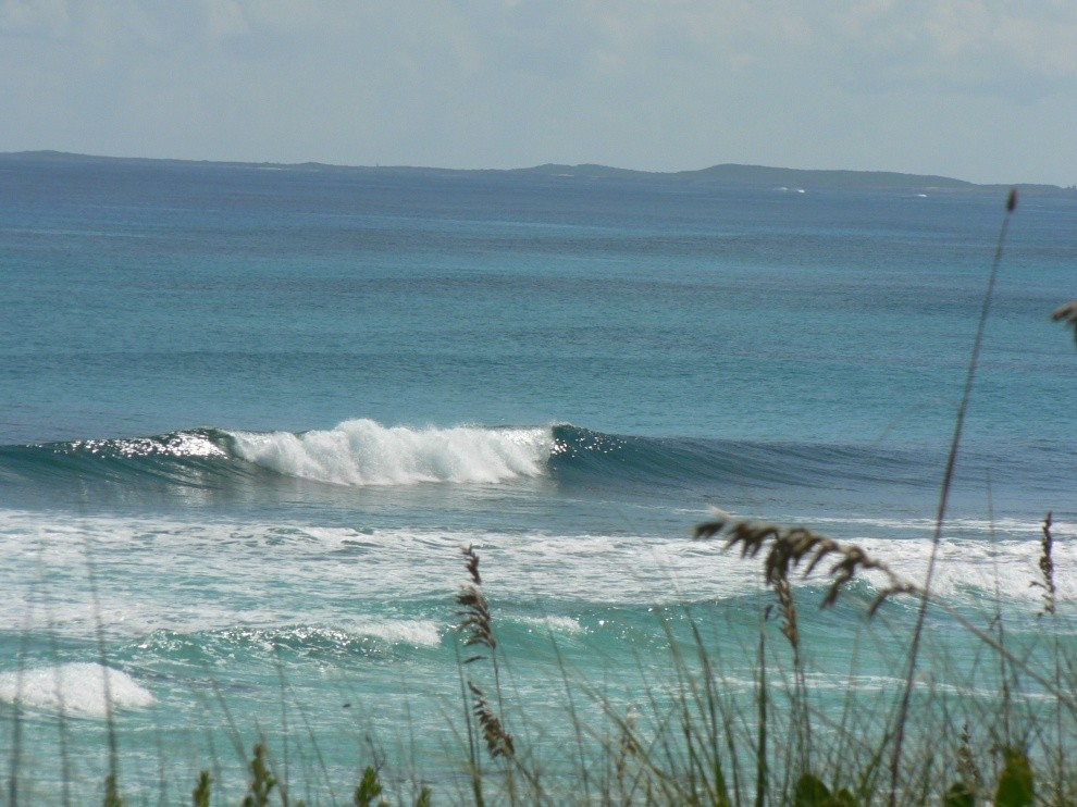 ROSCO IN PARADISE's photo of Surfers Beach