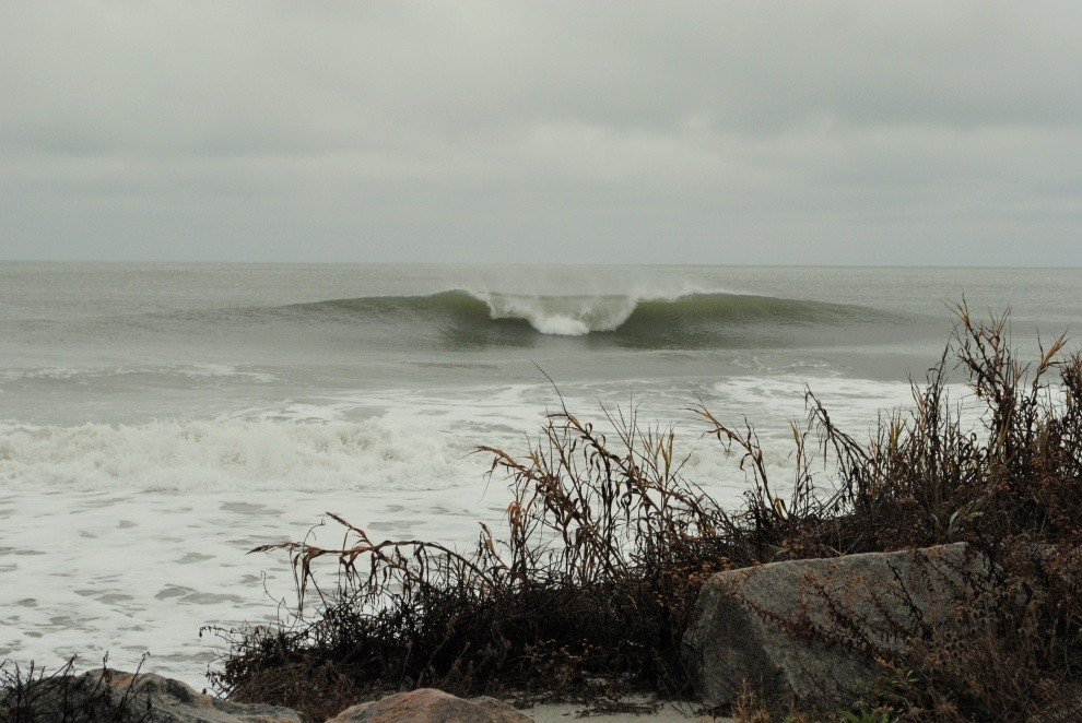 Follyhood's photo of The Washout