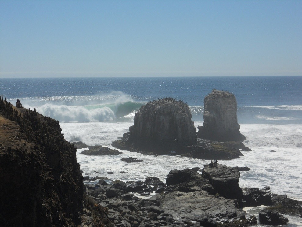 felipedru's photo of Punta de Lobos