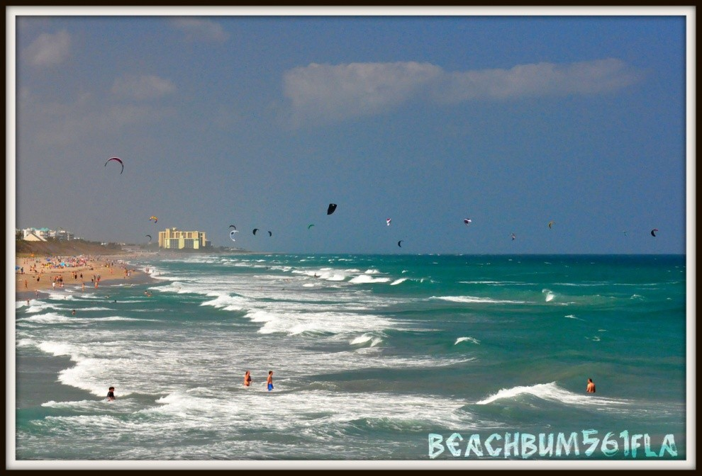 BeachBum561's photo of Juno Beach