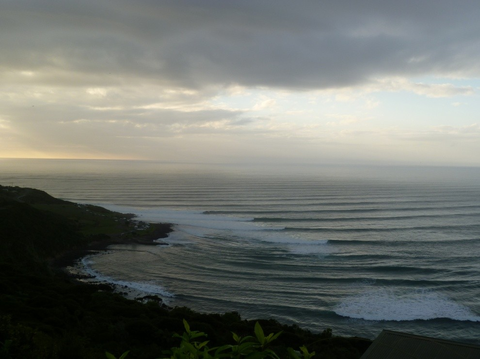 stillseeingred's photo of Raglan