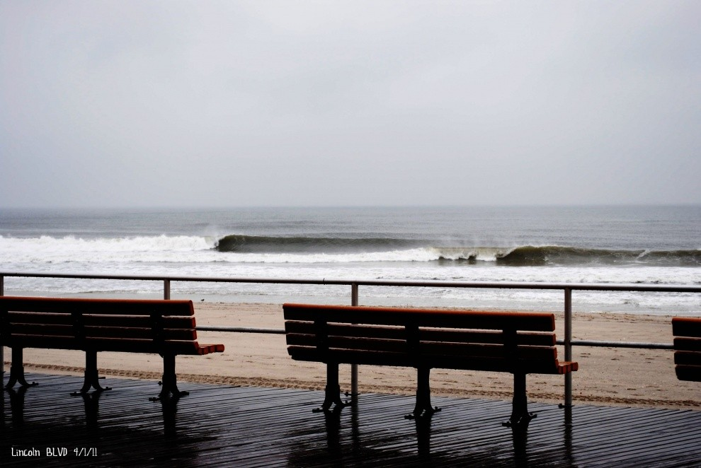 Shane Murphy's photo of Long Beach