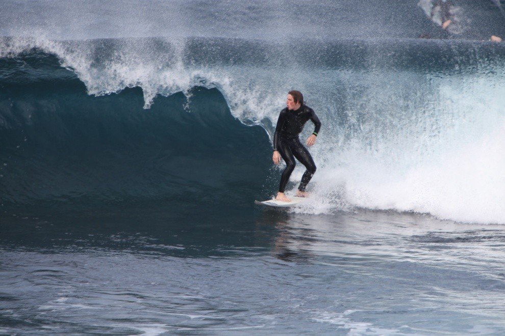 insanedane07's photo of Turtles
