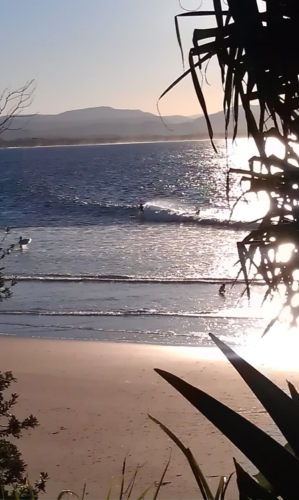 harveylegend's photo of Byron Bay