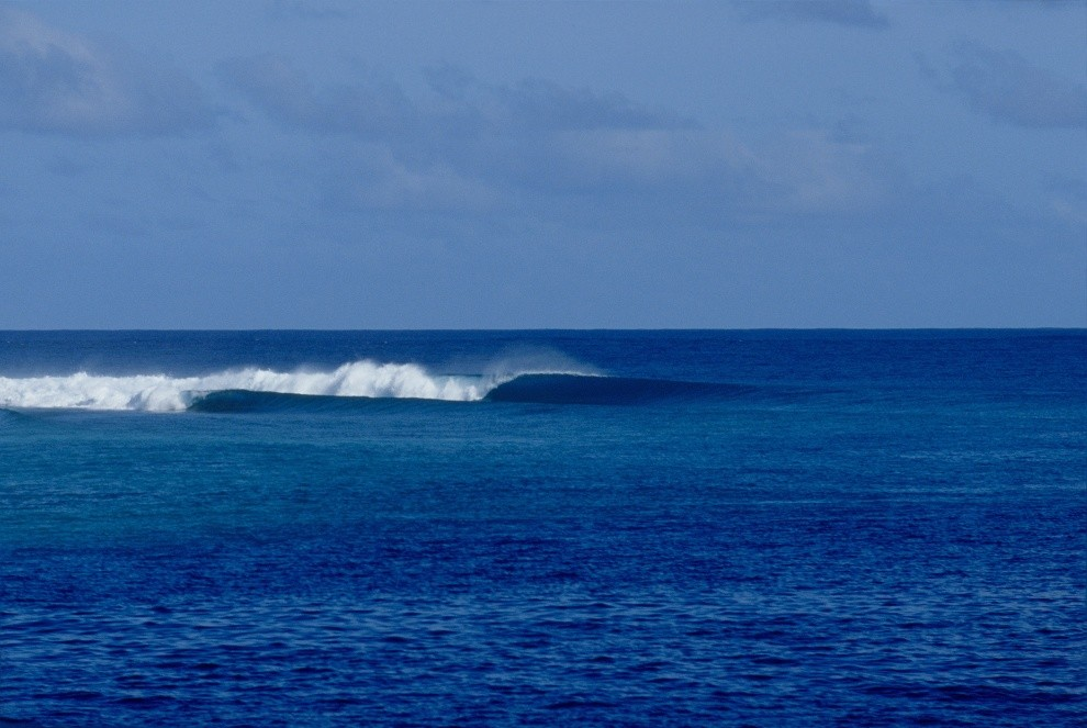 Maldivesurf's photo of Malik's