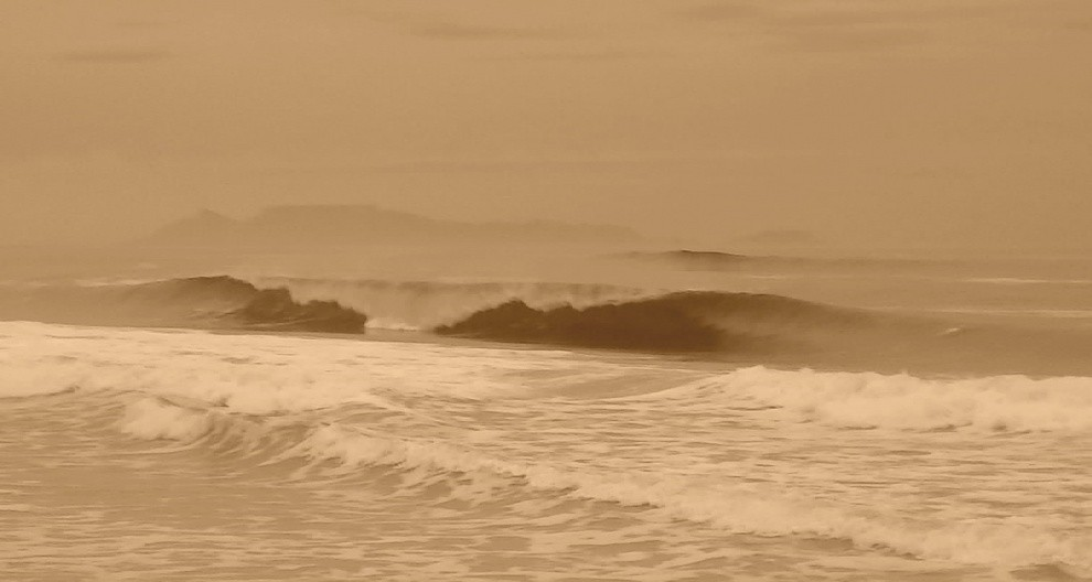 Wern of the Cape's photo of Yzerfontein