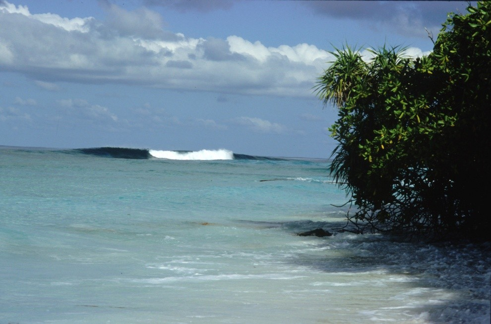 Maldivesurf's photo of Shangri-la