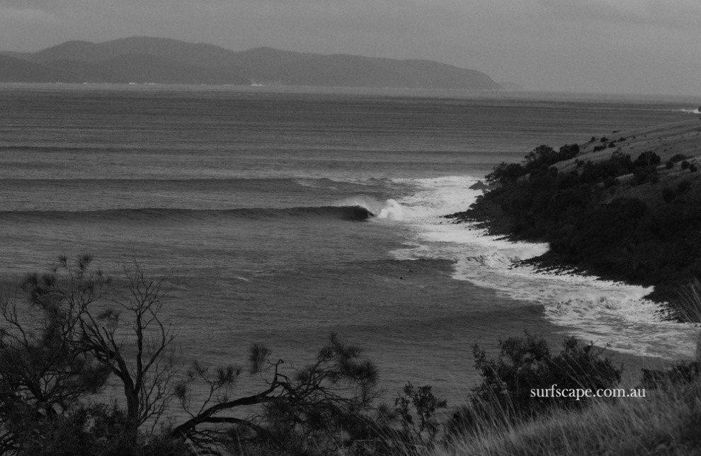 surfscape.com.au's photo of Clifton Beach