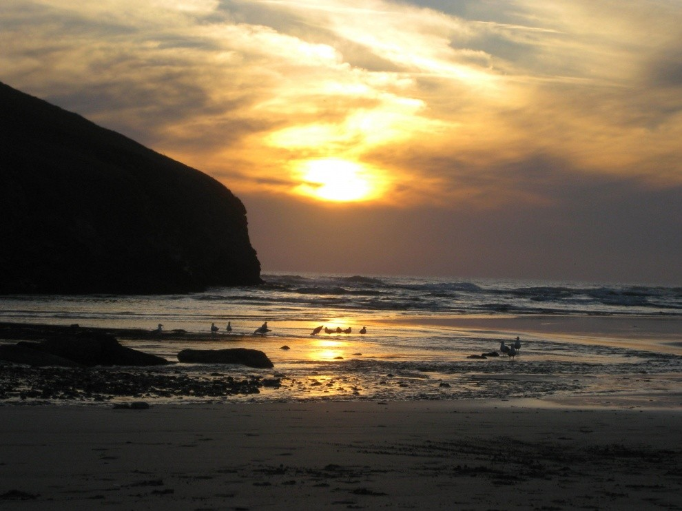 ozzy28's photo of Mawgan Porth
