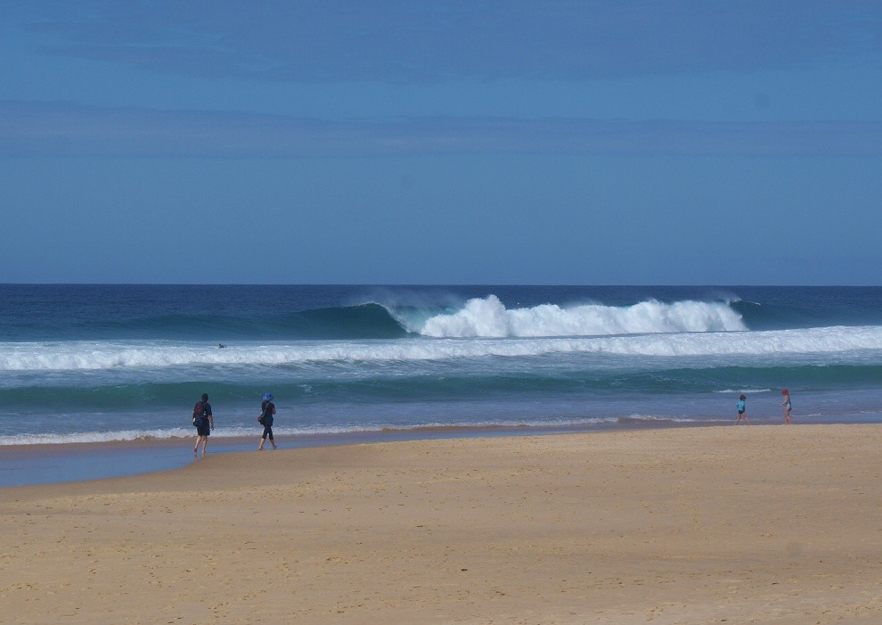 JD's photo of Sunshine Beach