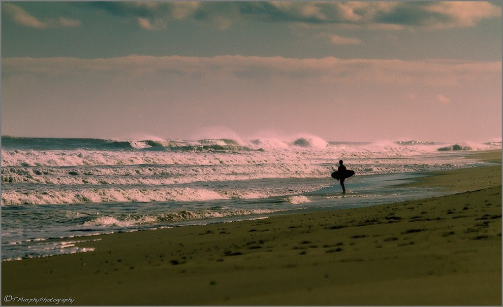 Trevor Murphy's photo of Cape Cod