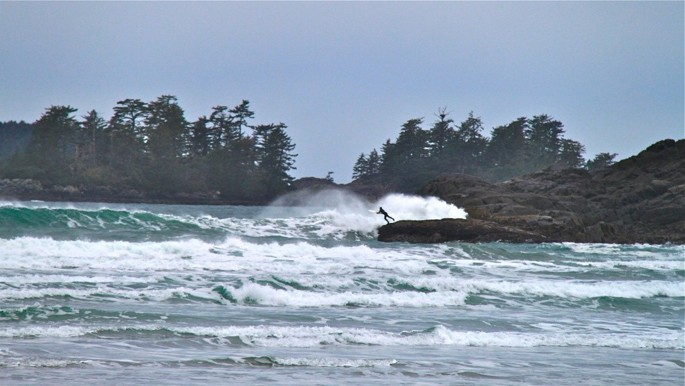 User123's photo of Tofino (Cox Bay)